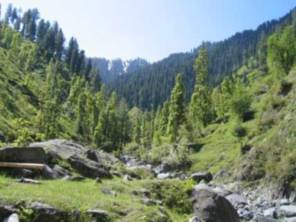 Miandam Stream (Khwar)