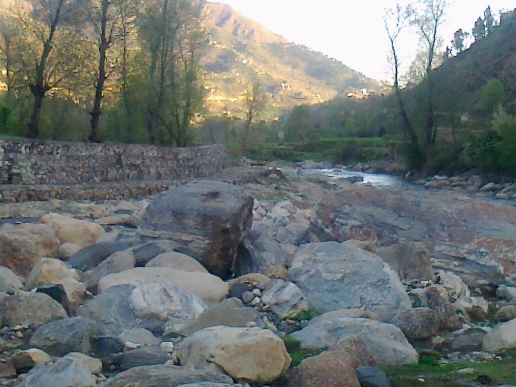 Aloch Stream