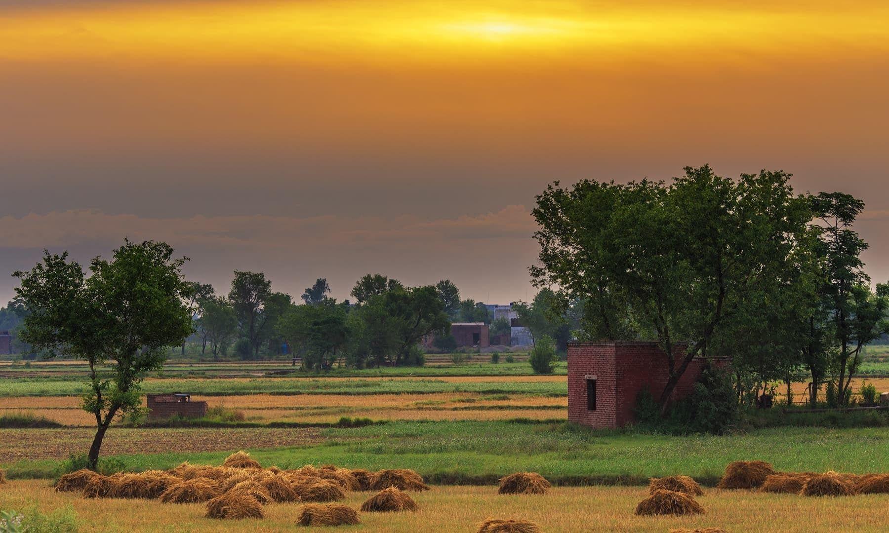 Marala Village