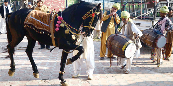 Sibi Festival